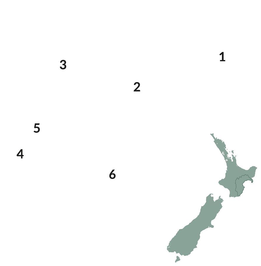 Wellington 2x