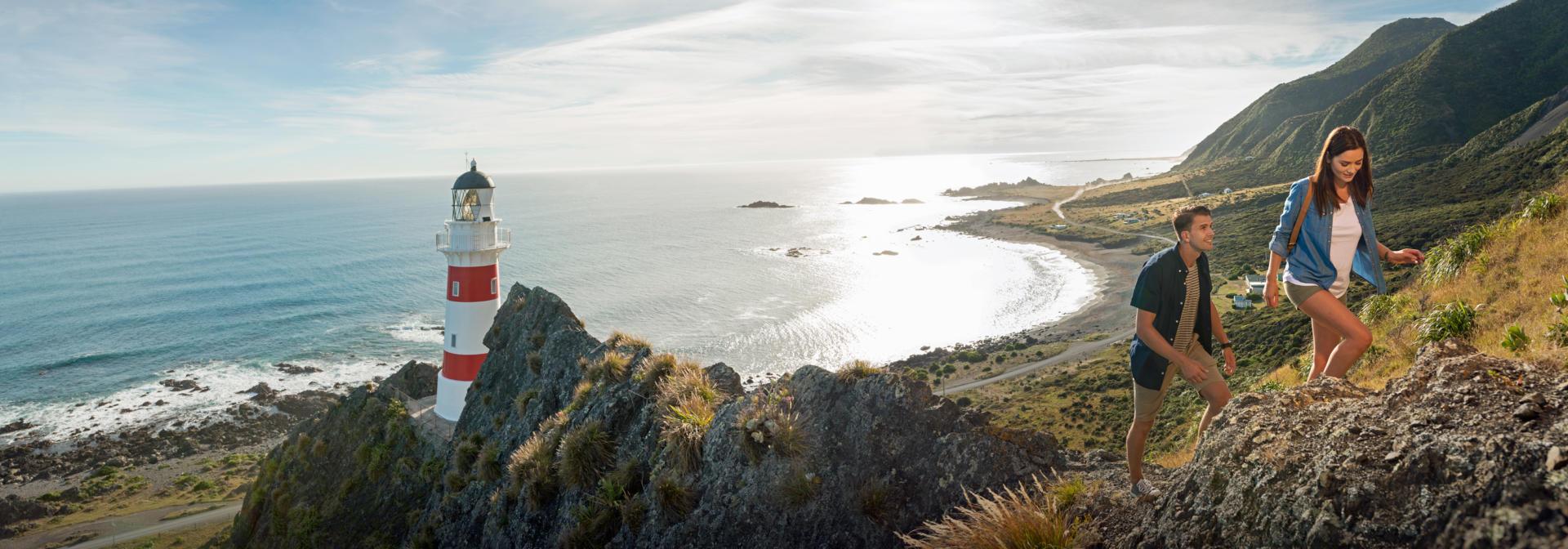 Wellington Cape Palliser 01 P